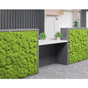 Moss Fronted Reception Desk