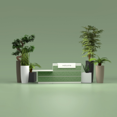 Office Plants for Reception